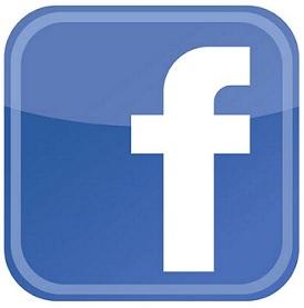 Facebook Fan Page | 600+ fans